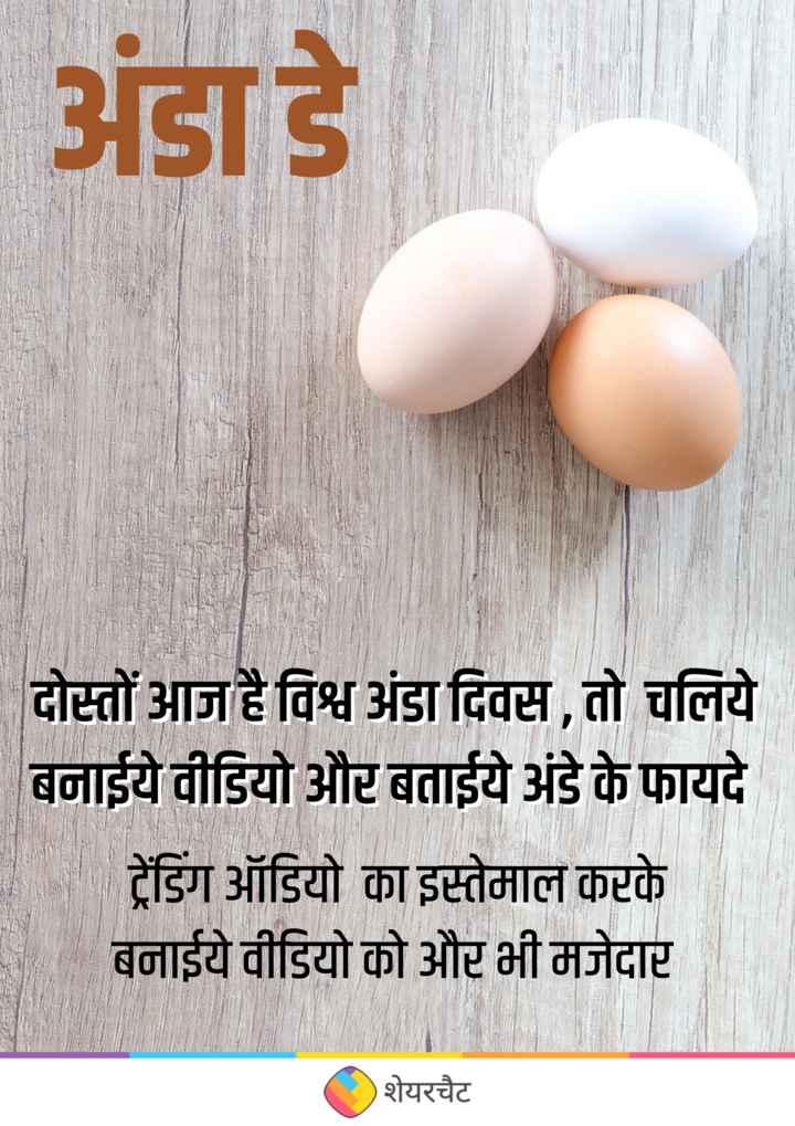 🥚 अंडा डे - ShareChat