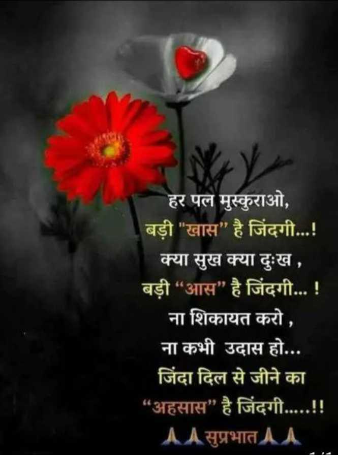 """👌 अच्छी सोच👍 - हर पल मुस्कुराओ , बड़ी खास है जिंदगी . . . ! क्या सुख क्या दुःख , बड़ी """" आस है जिंदगी . . . ! ना शिकायत करो , ना कभी उदास हो . . . जिंदा दिल से जीने का अहसास है जिंदगी . . . . . ! ! AA सुप्रभात AA - ShareChat"""