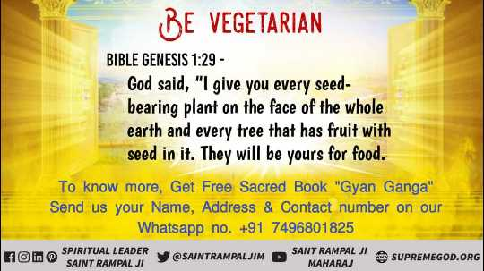 👌 अच्छी सोच👍 - BE VEGETARIAN BIBLE GENESIS 1 : 29 - God said , I give you every seed bearing plant on the face of the whole earth and every tree that has fruit with seed in it . They will be yours for food . To know more , Get Free Sacred Book Gyan Ganga Send us your Name , Address & Contact number on our Whatsapp no . + 91 7496801825 M AL y @ SAINTRAMPALJIM SANT RAMPAL JI A SUPREMEGOD . ORG F in SPIRITUAL LEADER SAINT RAMPAL JI SANT RAMPAL MAHARAJ - ShareChat