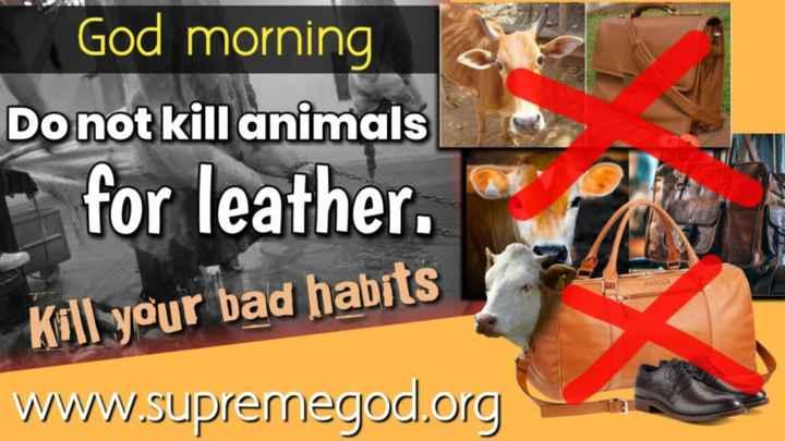 📝 अपने हिसाब से - God morning Do not kill animals for leather . Kall your bad habits www . supremegod . org - ShareChat