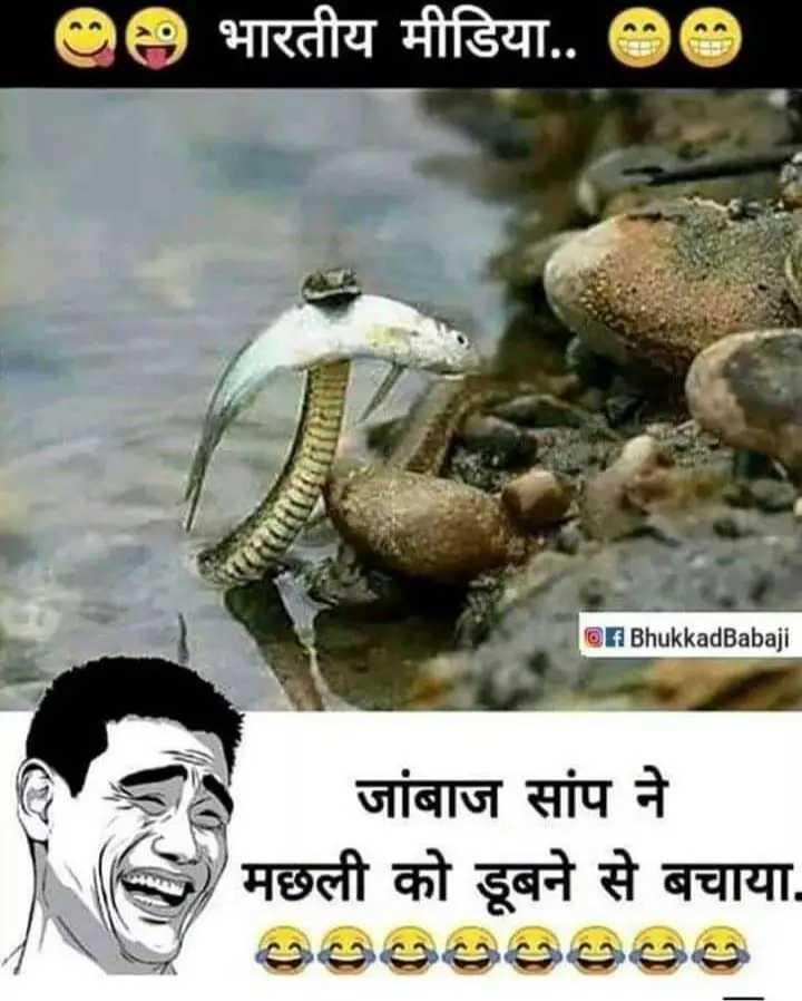 अलफ़ाज़🖋 - 9 भारतीय मीडिया . . 90 f BhukkadBabaji जांबाज सांप ने मछली को डूबने से बचाया . වූ පල්ලෙපෙපෙර - ShareChat