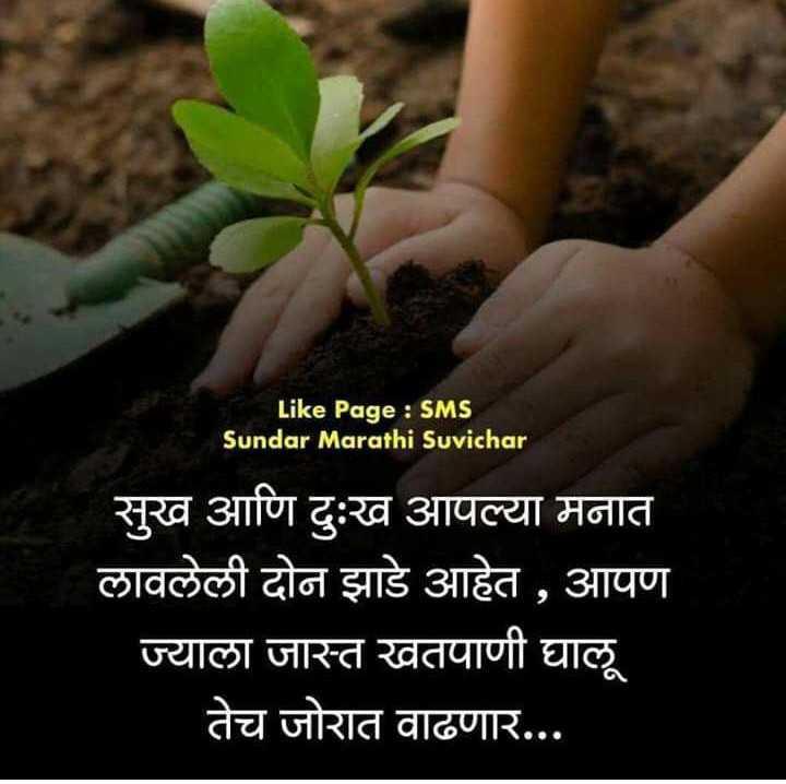 आम्ही नगरकर - Like Page : SMS Sundar Marathi Suvichar सुख आणि दुःख आपल्या मनात लावलेली दोन झाडे आहेत , आपण ज्याला जास्त खतपाणी घालू तेच जोरात वाढणार . . . - ShareChat