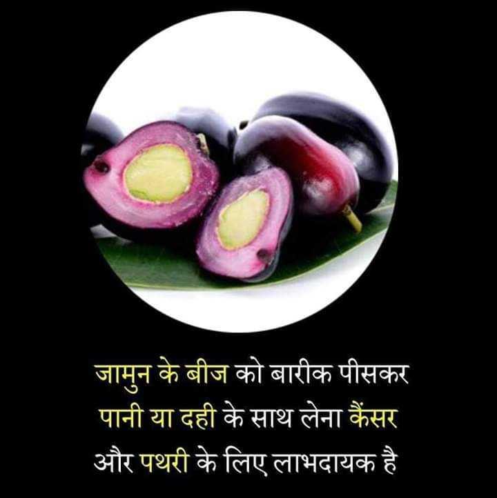 🌿आयुर्वेद - जामुन के बीज को बारीक पीसकर पानी या दही के साथ लेना कैंसर और पथरी के लिए लाभदायक है । - ShareChat