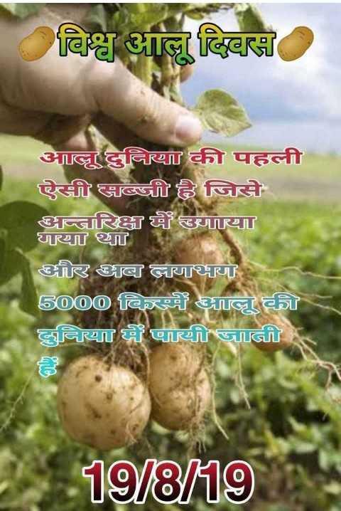 🥔 आलू दिवस - विश्व आल दिवस आलू दुनिया की पहली ऐसी सब्जी है जिसे अन्तरिक्ष में लगाया गया था और आब लगभग 5000 किस्में आलू की दुनिया में पायी जाती 19 / 8 / 19 - ShareChat