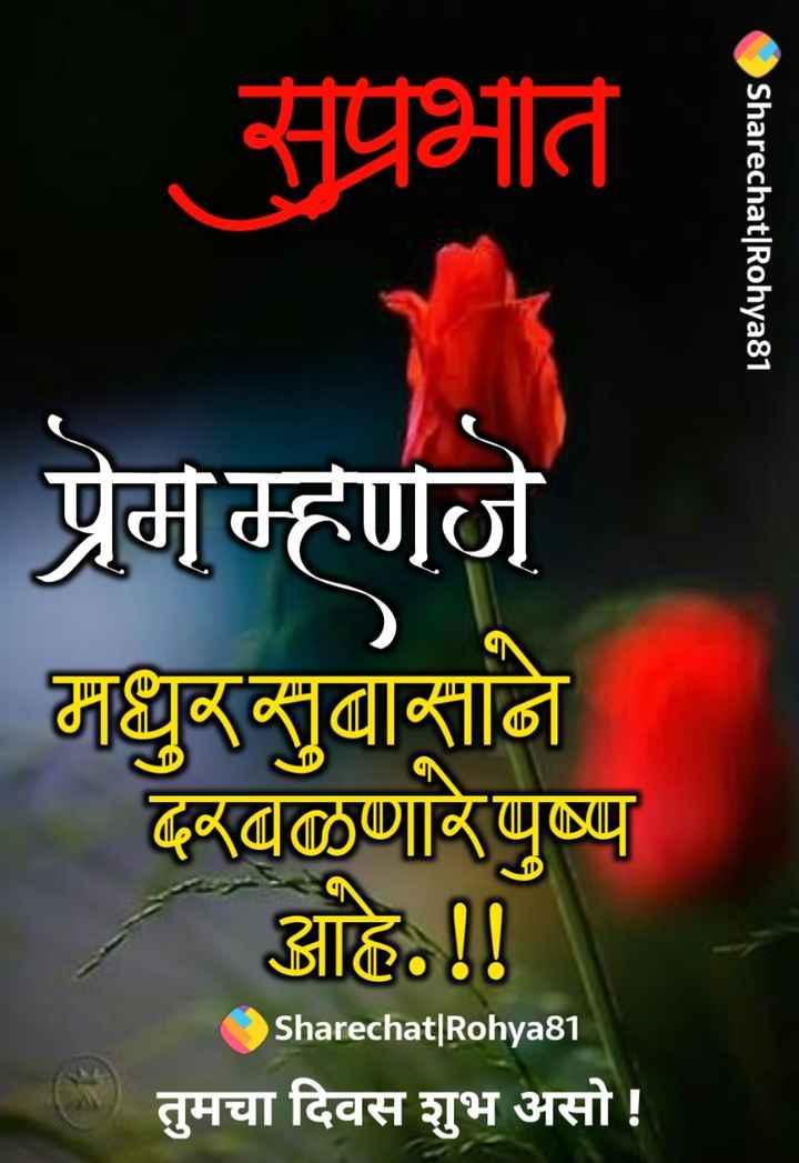 💐इतर शुभेच्छा - सुप्रभात Sharechat   Rohya81 प्रेम म्हणजे मधुर सुबासाने दरवळणारे पुष्प आहे . ! ! Sharechat   Rohya81 तुमचा दिवस शुभ असो ! - ShareChat