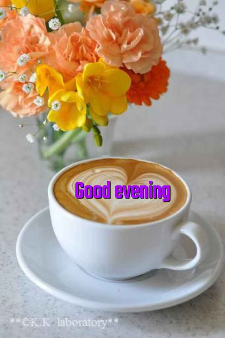 💐इतर शुभेच्छा - Good evening * * CKK laboratory * * - ShareChat
