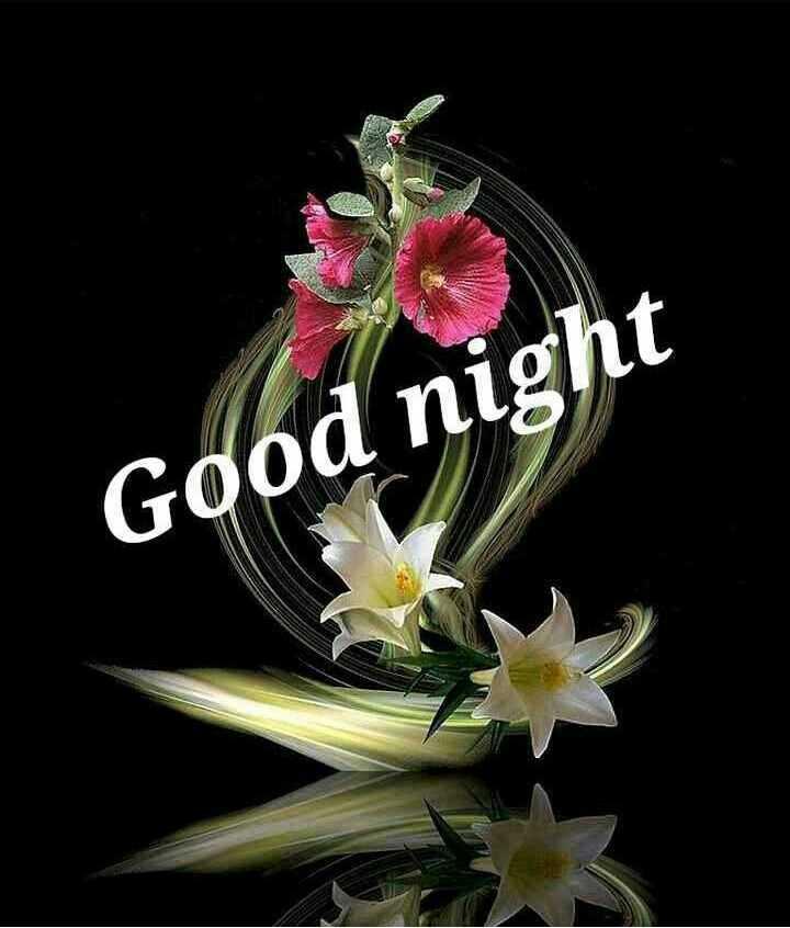 💐इतर शुभेच्छा - Good night - ShareChat