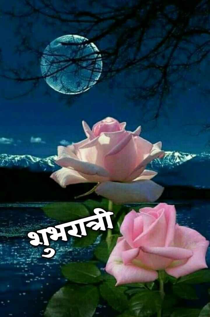 💐इतर शुभेच्छा - शुभरात्री - ShareChat