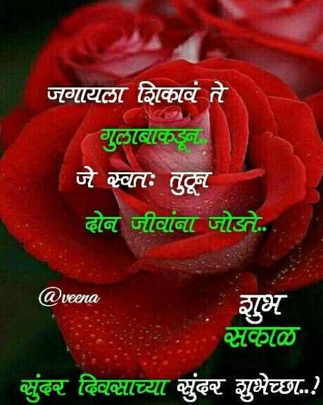 💐इतर शुभेच्छा - जगायला शिकावं ते गुलाबाकडून जे स्वतः तुटून दोन जीवांना जोडते . शुभ @ veena सकाळ सुंदर दिवसाच्या सुंदर शुभेच्छा . . ! - ShareChat