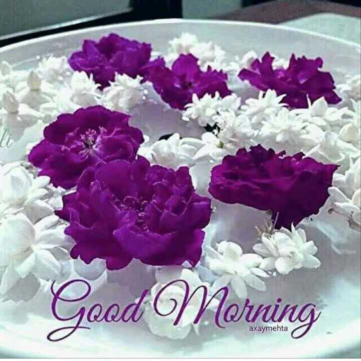 💐इतर शुभेच्छा - Good Morning axaymehta - ShareChat