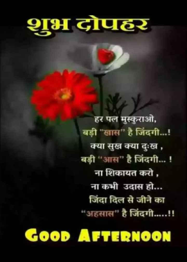 """💐इतर शुभेच्छा - शुभ दोपहर - हर पल मुस्कुराओ , बड़ी खास है जिंदगी . . . ! क्या सुख क्या दुःख , बड़ी """" आस है जिंदगी . . . ! ना शिकायत करो , ना कभी उदास हो . . . जिंदा दिल से जीने का """" अहसास है जिंदगी . . . . . ! ! GOOD AFTERNOON - ShareChat"""
