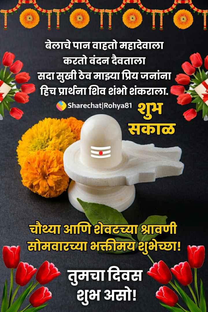 💐इतर शुभेच्छा - TOTTO ΤΌΠΟ बेलाचे पान वाहतो महादेवाला करतो वंदन दैवताला सदा सुखी ठेव माझ्या प्रिय जनांना हिच प्रार्थना शिव शंभो शंकराला . Sharechat | Rohya81 सकाळ चौथ्या आणि शेवटच्या श्रावणी सोमवारच्या भक्तीमय शुभेच्छा ! तुमचा दिवस शुभ असो ! - ShareChat
