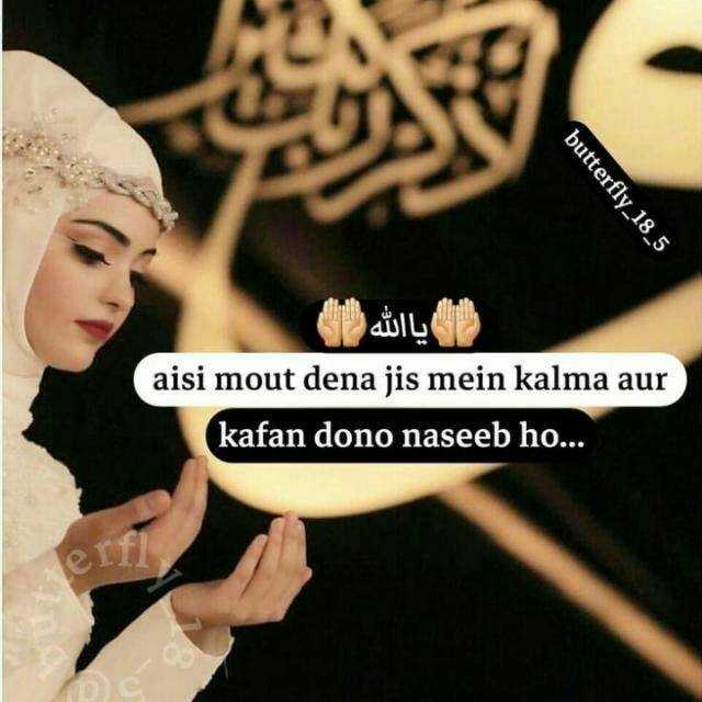 🤲 इबादत - butterfly _ 18 _ 5 ) یا الله aisi mout dena jis mein kalma aur kafan dono naseeb ho . . . - ShareChat