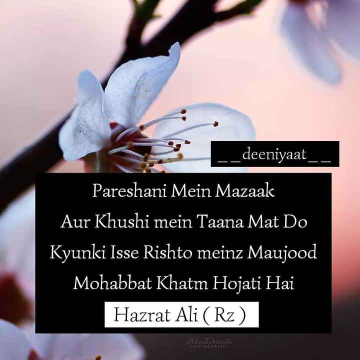 🤲 इबादत - deeniyaat _ _ deeniyaa Pareshani Mein Mazaak Aur Khushi mein Taana Mat Do Kyunki Isse Rishto meinz Maujood Mohabbat Khatm Hojati Hai Hazrat Ali ( Rz ) PHOTOGRAPHY - ShareChat