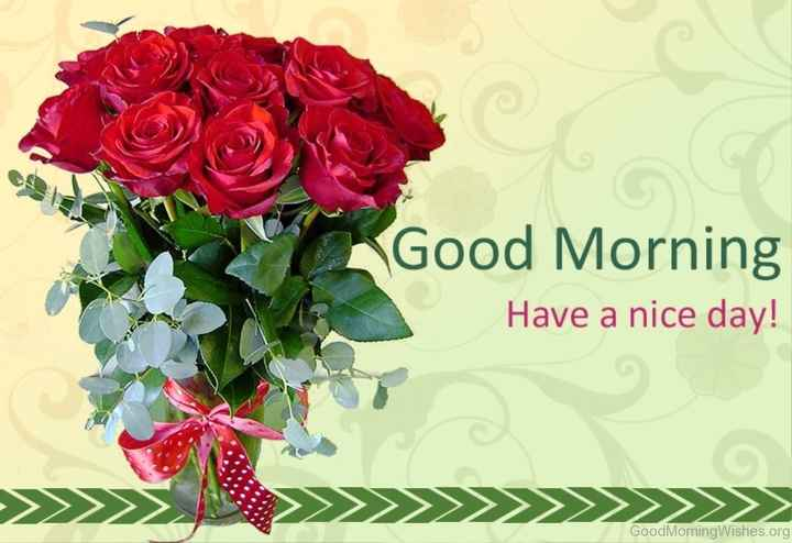 इमेज स्टेटस - Good Morning Have a nice day ! > > > > > > > > > > > > > > Good Morning Wishes . org - ShareChat