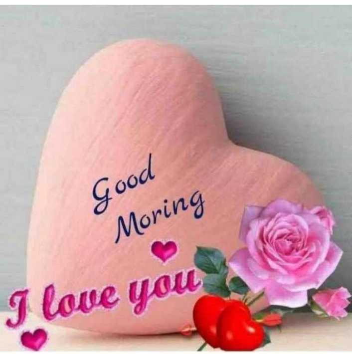 💏 इश्क़-मोहब्बत - Good Moring I love you love - ShareChat