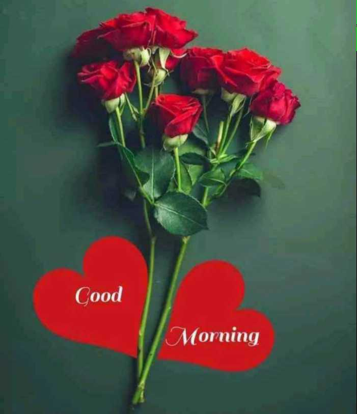 💏 इश्क़-मोहब्बत - Cood Morning - ShareChat