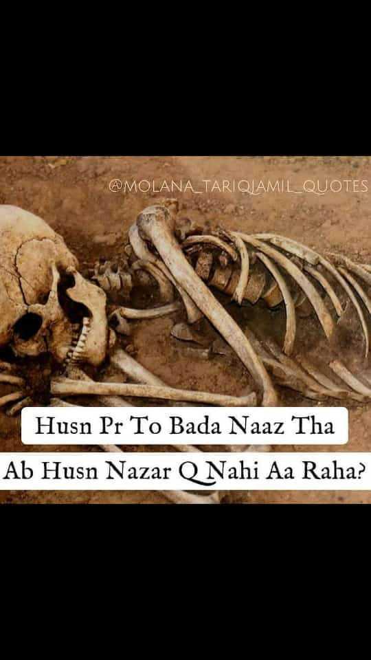 💏इश्क़-मोहब्बत - @ MOLANA _ TARIQLAMIL _ QUOTES Husn Pr To Bada Naaz Tha Ab Husn Nazar Nahi Aa Raha ? - ShareChat