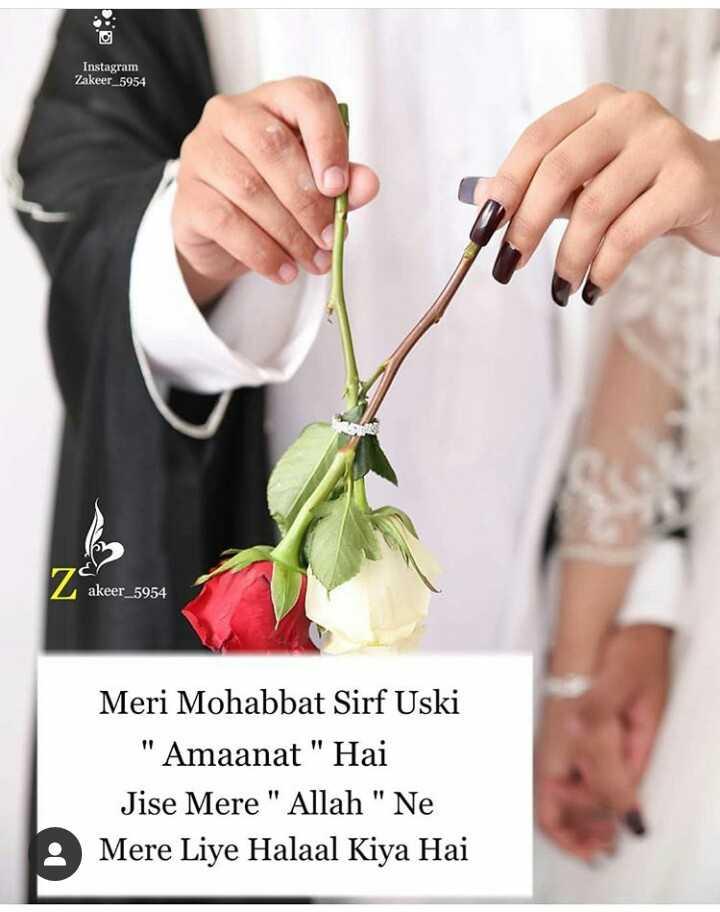 💏इश्क़-मोहब्बत - Instagram Zakeer _ 5954 akeer _ 5954 Meri Mohabbat Sirf Uski Amaanat Hai Jise Mere Allah Ne Mere Liye Halaal Kiya Hai - ShareChat