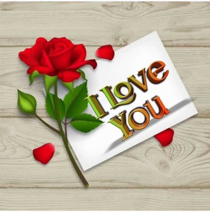 💏 इश्क़-मोहब्बत - I love You - ShareChat