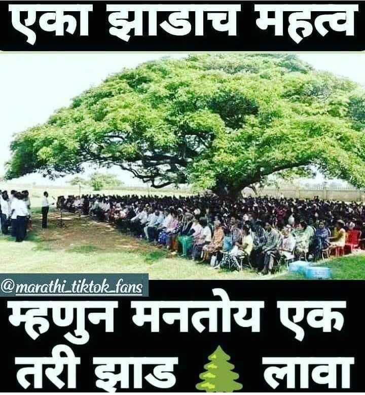 🤯उन्हाळा केअर टिप्स - एका झाडच महत्व @ marathi _ tiktok _ fans म्हणुन मनतोय एक तरी झाड लावा - ShareChat