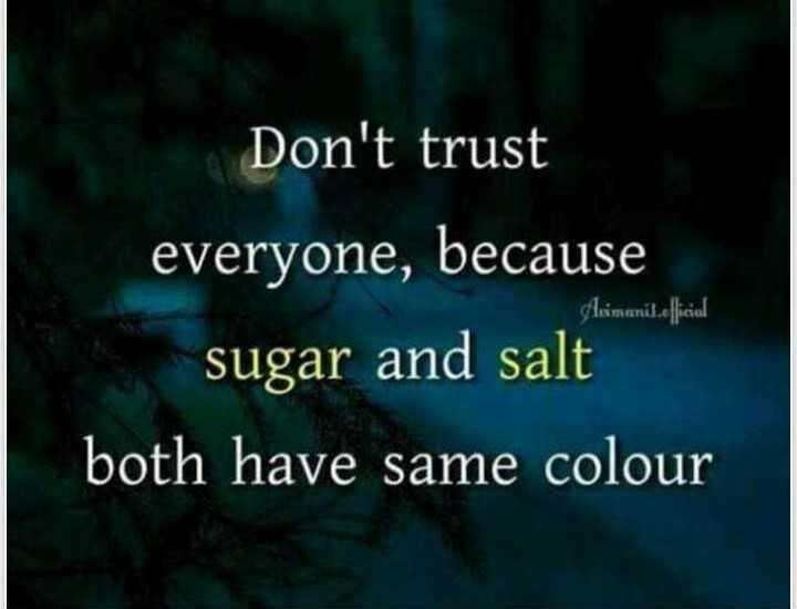😎 एटीट्यूड शायरी स्टेटस - Don ' t trust Akimanil . efficial everyone , because sugar and salt both have same colour - ShareChat