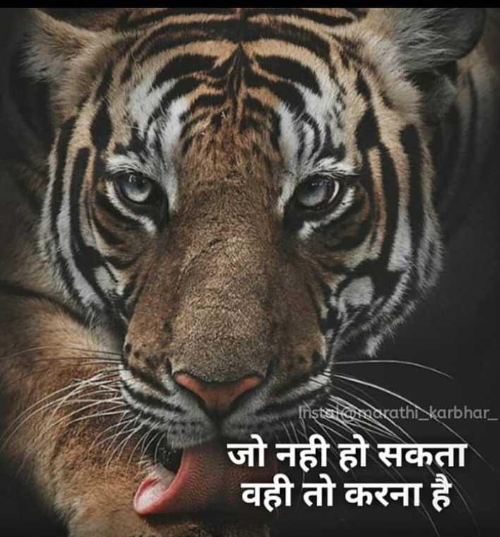 😎एटीट्यूड शायरी - Instalare arathi karbhar _ जो नही हो सकता वही तो करना है । - ShareChat