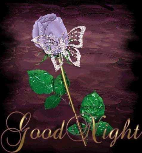 💚कच्ची कैरी डे - Good Night - ShareChat