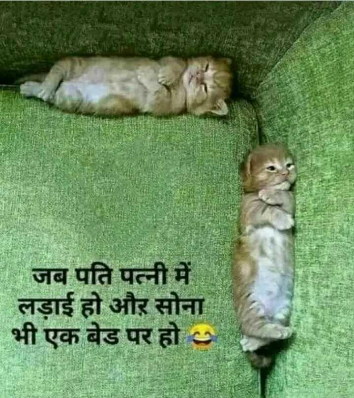 😎 कनपुरिया - - जब पति पत्नी में लड़ाई हो और सोना भी एक बेड पर हो - ShareChat