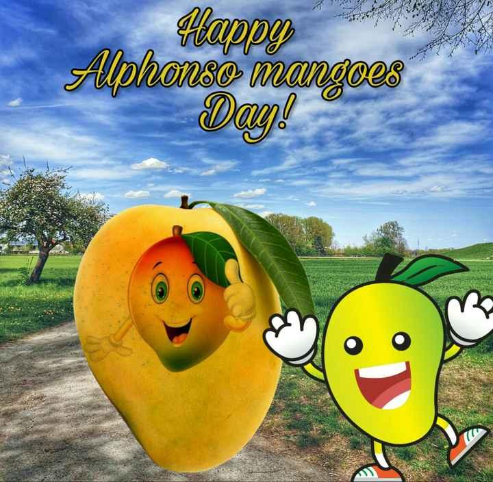 🥭कैरी/आंबा डे - Happy Alphonso mangoes Day ! - ShareChat