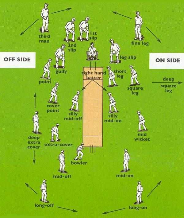 🧐 क्रिकेट ज्ञान - third man slip fine leg 2nd slip OFF SIDE leg slip ON SIDE gully short might hand batter leg point deep square square leg leg cover point silly mid - off silly mid - on mid wicket deep extra cover extra - cover bowler mid - off mid - on long - off long - on - ShareChat