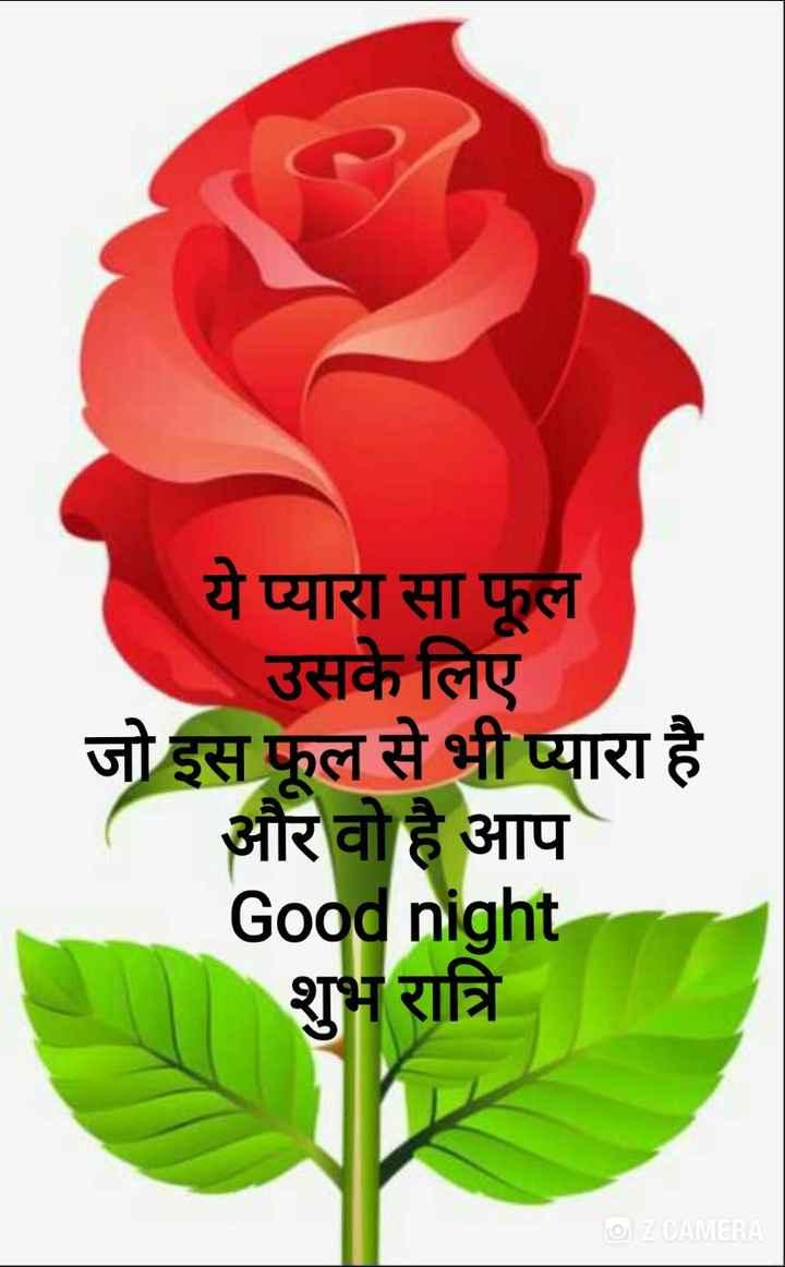 🌙 गुड नाईट - ये प्यारा सा फूल उसके लिए जो इस फूल से भी प्यारा है और वो है आप Good night शुभ रात्रि ☺ Z CAMERA - ShareChat