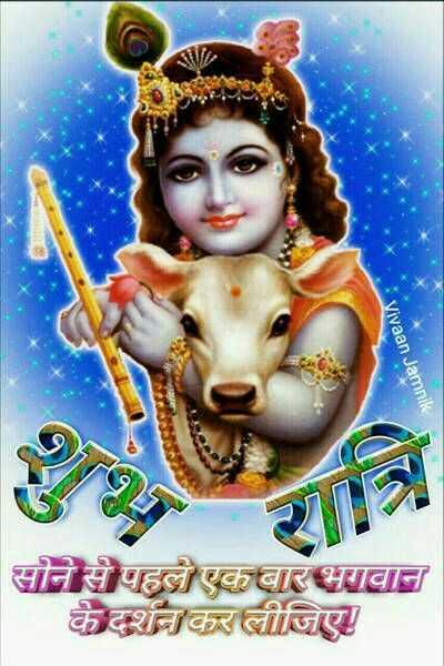 🌙 गुड नाईट - Vivaan Jamnik CE सोने से पहले एक बार भगवान । के दर्शन कर लीजिए । - ShareChat