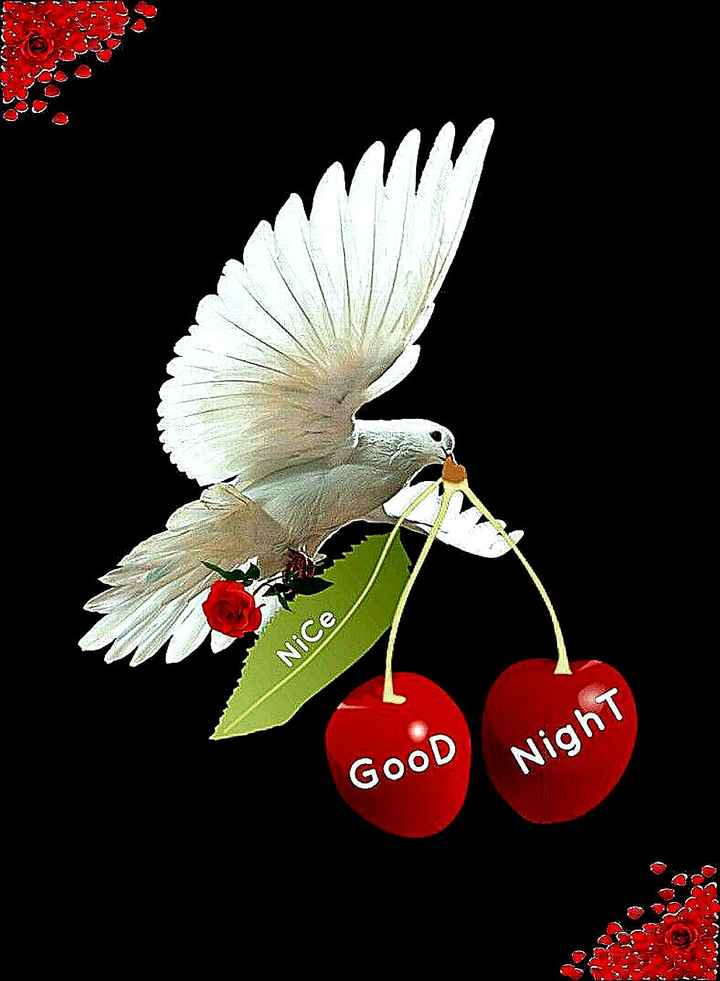 🌙 गुड नाईट - Nice GOOD Night - ShareChat