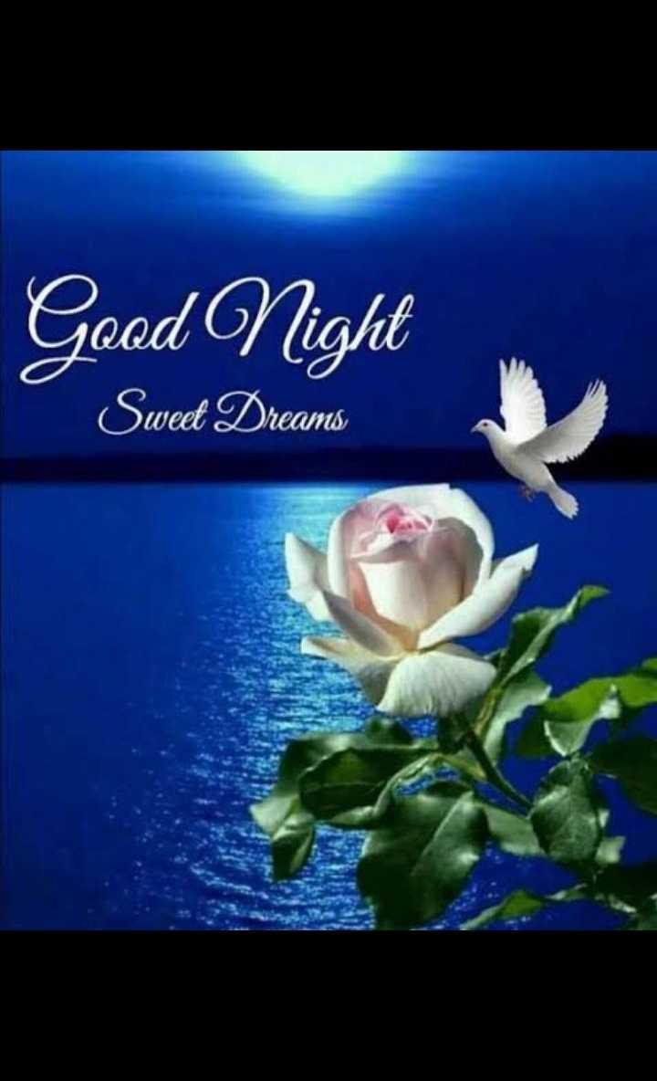 🌙 गुड नाईट - Good Night Swed Dreams - ShareChat