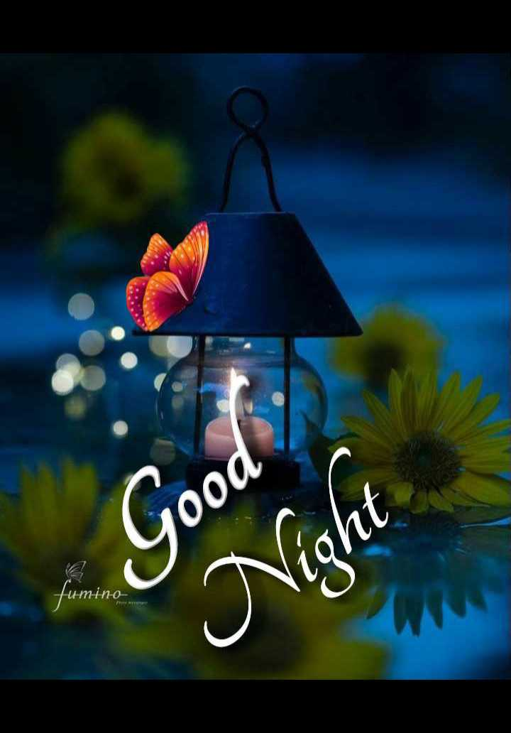 🌙 गुड नाईट - Good Night - tumino - ShareChat