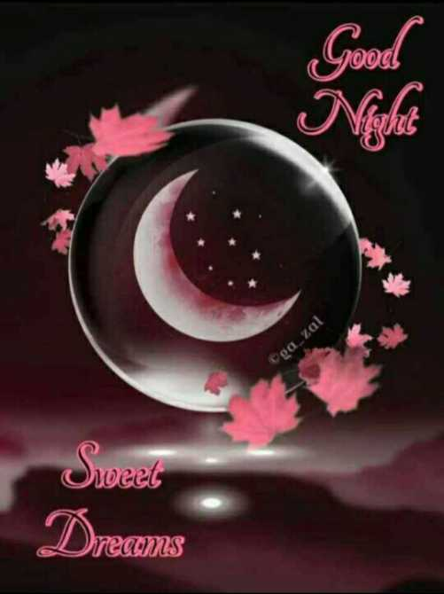 🌙 गुड नाईट - 1ood Oga _ zal Sweet Dreams - ShareChat