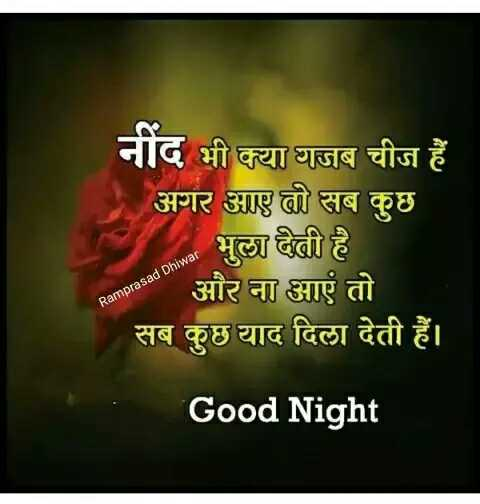 🌙 गुड नाईट - नींद भी क्या गजब चीज हैं अगर आए तो सब कुछ भुला देती है anoes और ना आएं तो सब कुछ याद दिला देती हैं । Ramprasad Dhiwar Good Night - ShareChat