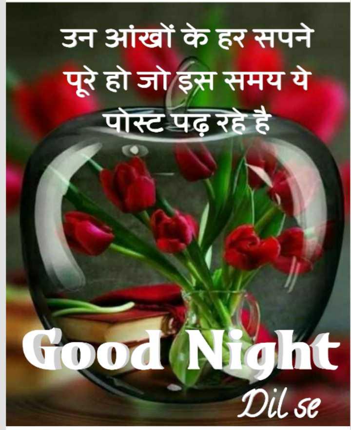 🌙 गुड नाईट - उन आंखों के हर सपने पूरे हो जो इस समय ये पोस्ट पढ़ रहे है Good Night Dil se - ShareChat