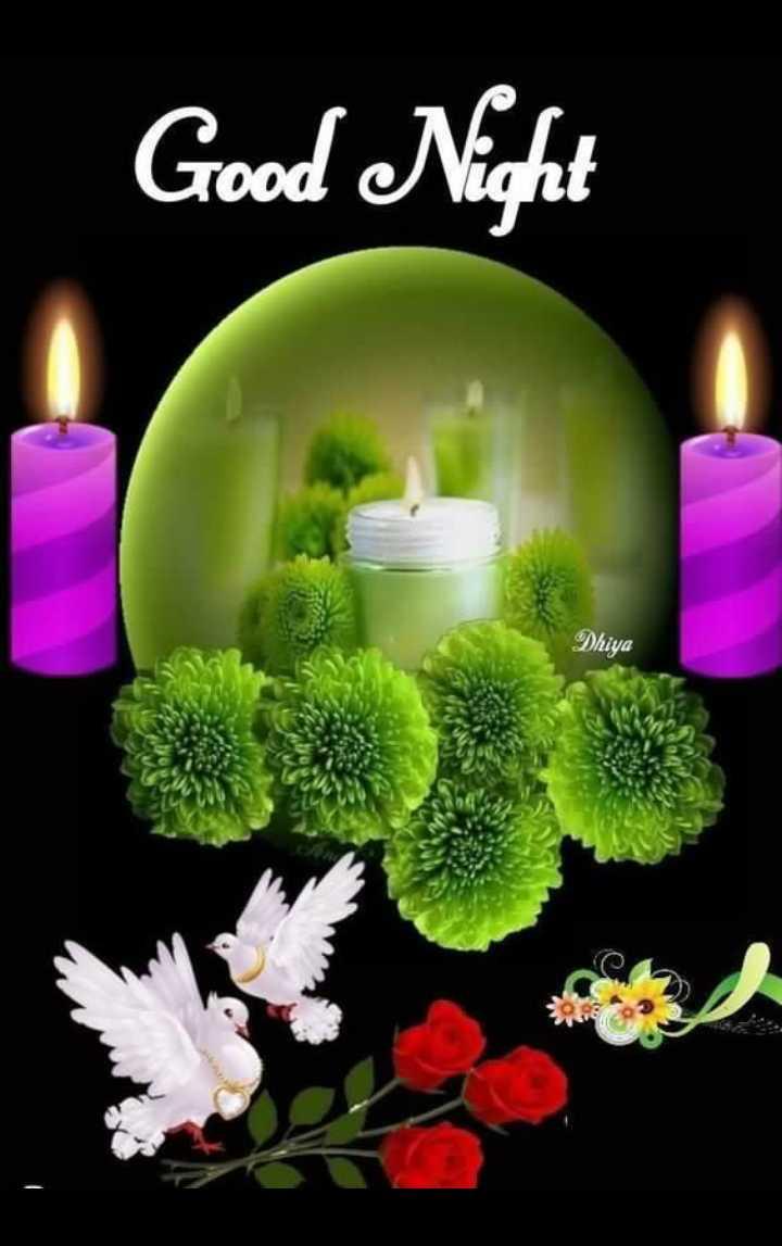 🌙 गुड नाईट - Good Night Dhiya ho - ShareChat