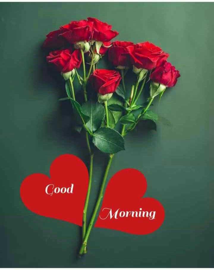 गुड मॉर्निंग शायरी - Cood Morning - ShareChat