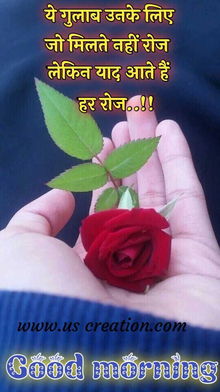 गुड मॉर्निंग शायरी - ये गुलाब उनके लिए जो मिलते नहीं रोज लेकिन याद आते हैं । हर रोज ०४४ www . us creation . com Good morning - ShareChat