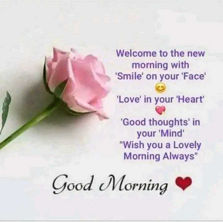 गुड मॉर्निंग - Welcome to the new morning with ' Smile ' on your Face ' Love ' in your Heart ' ' Good thoughts ' in your ' Mind Wish you a Lovely Morning Always Good Morning - ShareChat