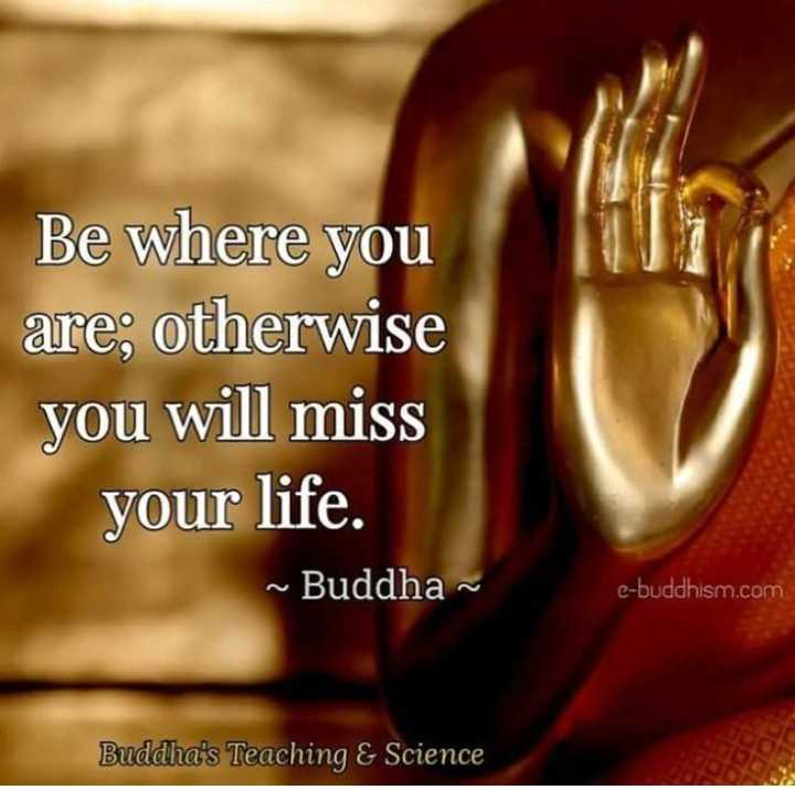 गौतमबुद्ध - Be where you are ; otherwise you will miss your life . ~ Buddha e - buddhism . com Buddha ' s Teaching & Science - ShareChat