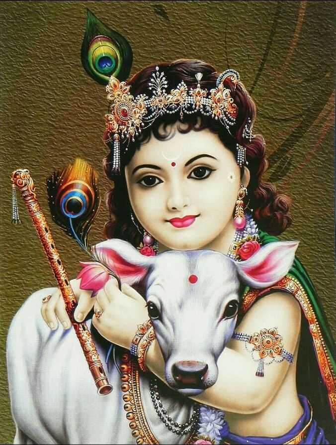 🐄 गौ माता - FIR 5 SO OUI O rduo 29 OCUS - ShareChat