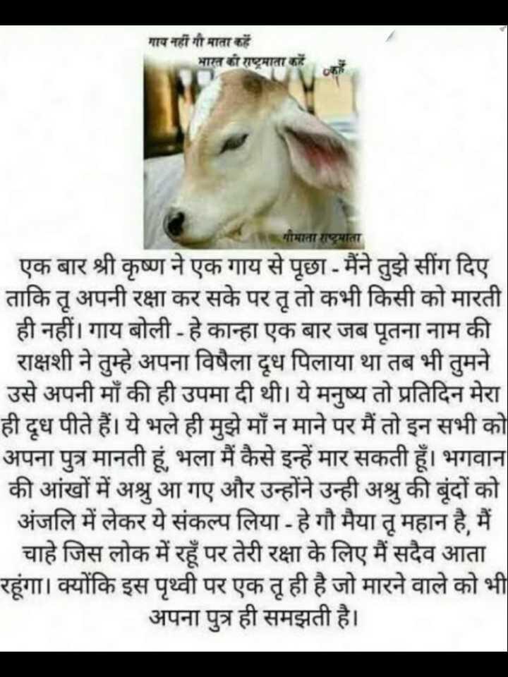 🐄 गौ माता - गाय नहीं गौमाता कहें भारत की राष्ट्रमाता कहें गौमाता राष्ट्रमाता एक बार श्री कृष्ण ने एक गाय से पूछा - मैंने तुझे सींग दिए ताकि तू अपनी रक्षा कर सके पर तू तो कभी किसी को मारती ही नहीं । गाय बोली - हे कान्हा एक बार जब पूतना नाम की राक्षशी ने तुम्हे अपना विषैला दूध पिलाया था तब भी तुमने उसे अपनी माँ की ही उपमा दी थी । ये मनुष्य तो प्रतिदिन मेरा ही दूध पीते हैं । ये भले ही मुझे माँ न माने पर मैं तो इन सभी को अपना पुत्र मानती हूं , भला मैं कैसे इन्हें मार सकती हूँ । भगवान की आंखों में अश्रु आ गए और उन्होंने उन्ही अश्रु की बूंदों को अंजलि में लेकर ये संकल्प लिया - हे गौ मैया तू महान है , मैं _ _ चाहे जिस लोक में रहूँ पर तेरी रक्षा के लिए मैं सदैव आता रहूंगा । क्योंकि इस पृथ्वी पर एक तू ही है जो मारने वाले को भी अपना पुत्र ही समझती है । - ShareChat