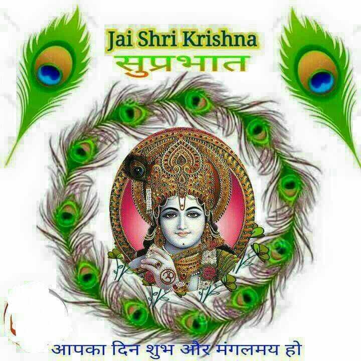 🐄 गौ माता - Jai Shri Krishna सुप्रभात - आपका दिन शुभ और मंगलमय हो - ShareChat