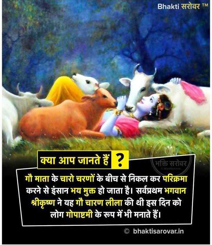 🐄 गौ सेवा दिवस - Bhakti सरोवर TM क्या आप जानते हैं ? भक्ति सरोवर गौ माता के चारो चरणों के बीच से निकल कर परिक्रमा करने से इंसान भय मुक्त हो जाता है । सर्वप्रथम भगवान श्रीकृष्ण ने यह गौ चारण लीला की थी इस दिन को लोग गोपाष्टमी के रूप में भी मनाते हैं । © bhaktisarovar . in - ShareChat