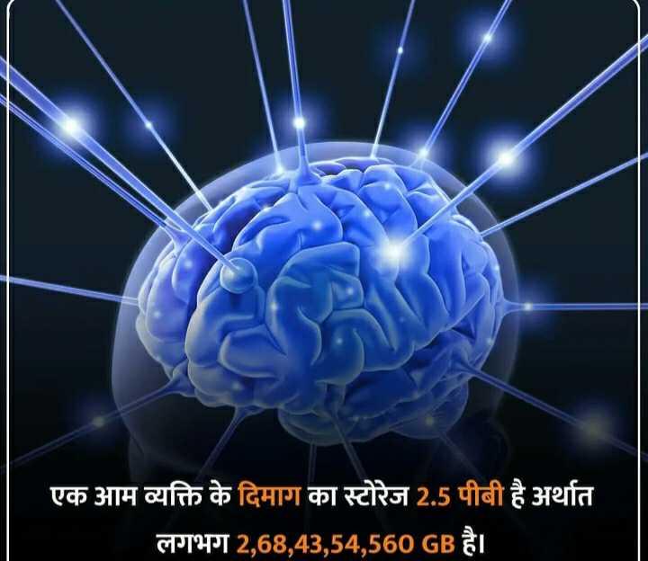🔐 ग्रुप: 🏅जनरल नॉलेज 🏆 - एक आम व्यक्ति के दिमाग का स्टोरेज 2 . 5 पीबी है अर्थात लगभग 2 , 68 , 43 , 54 , 560 GB है । - ShareChat