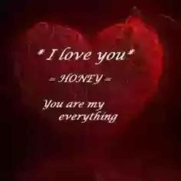 🔐 ग्रुप: पंटर लोग - * I love you = HONZY - You are my everything - ShareChat